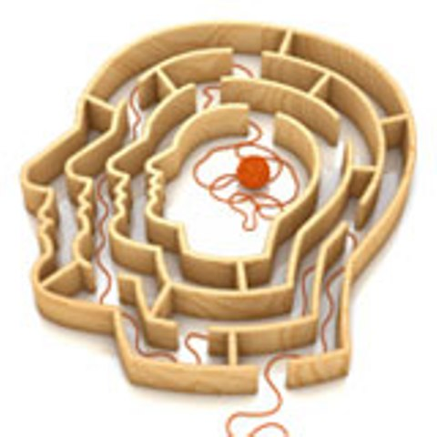 BRAIN LABYRINTH